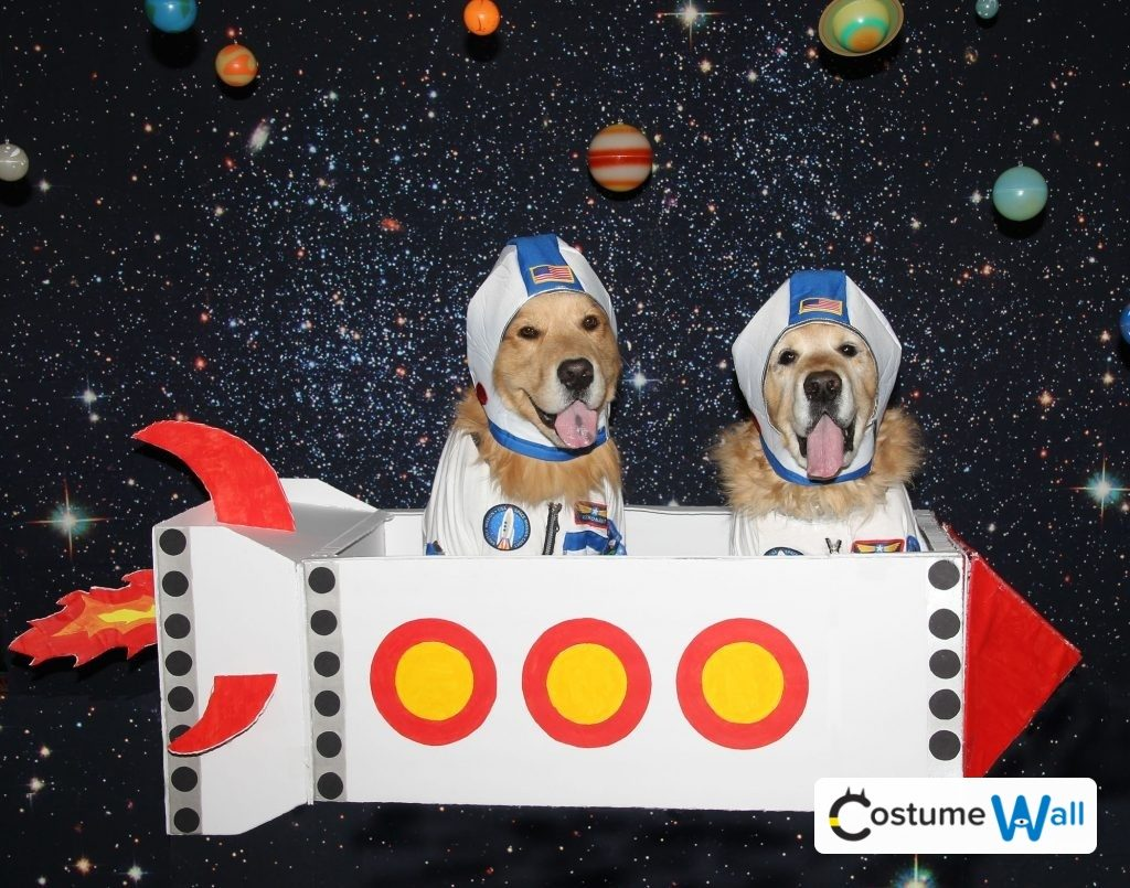 Phoenix and Gryphon as Astronauts