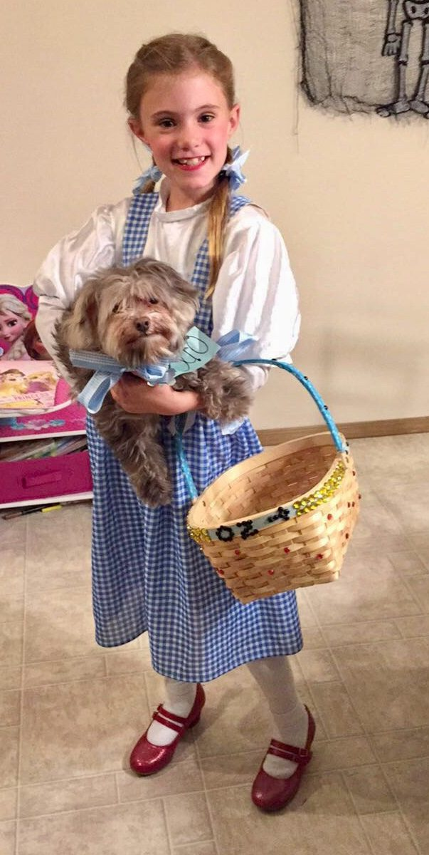 Dorothy and Toto  sc 1 st  Costume Wall & Dorothy and Toto | Halloween Costume Contest 2018