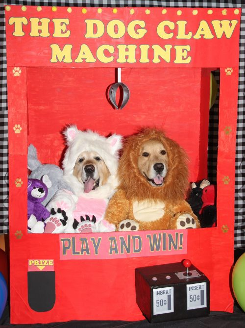 Stuffed Animals Phoenix and Gryphon in a Giant Claw Machine
