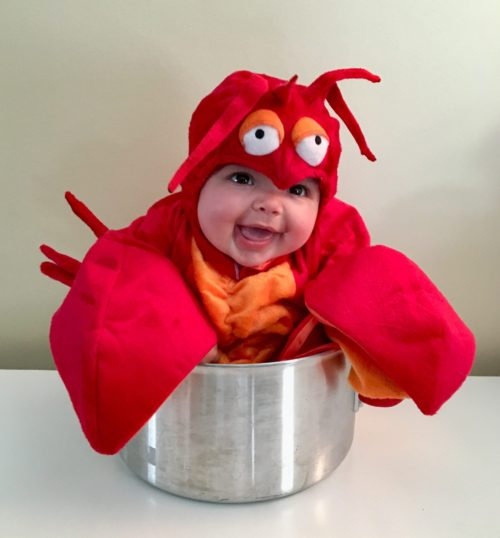 Luella the Lobster
