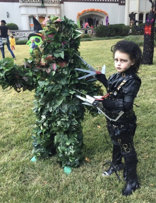 Edward Scissorhands & Bush