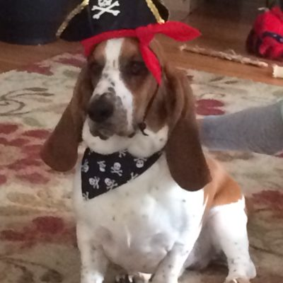 Gus the Pirate