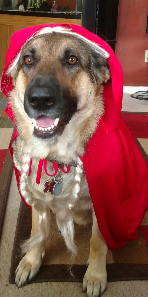 Justice as Little Red Riding Hood
