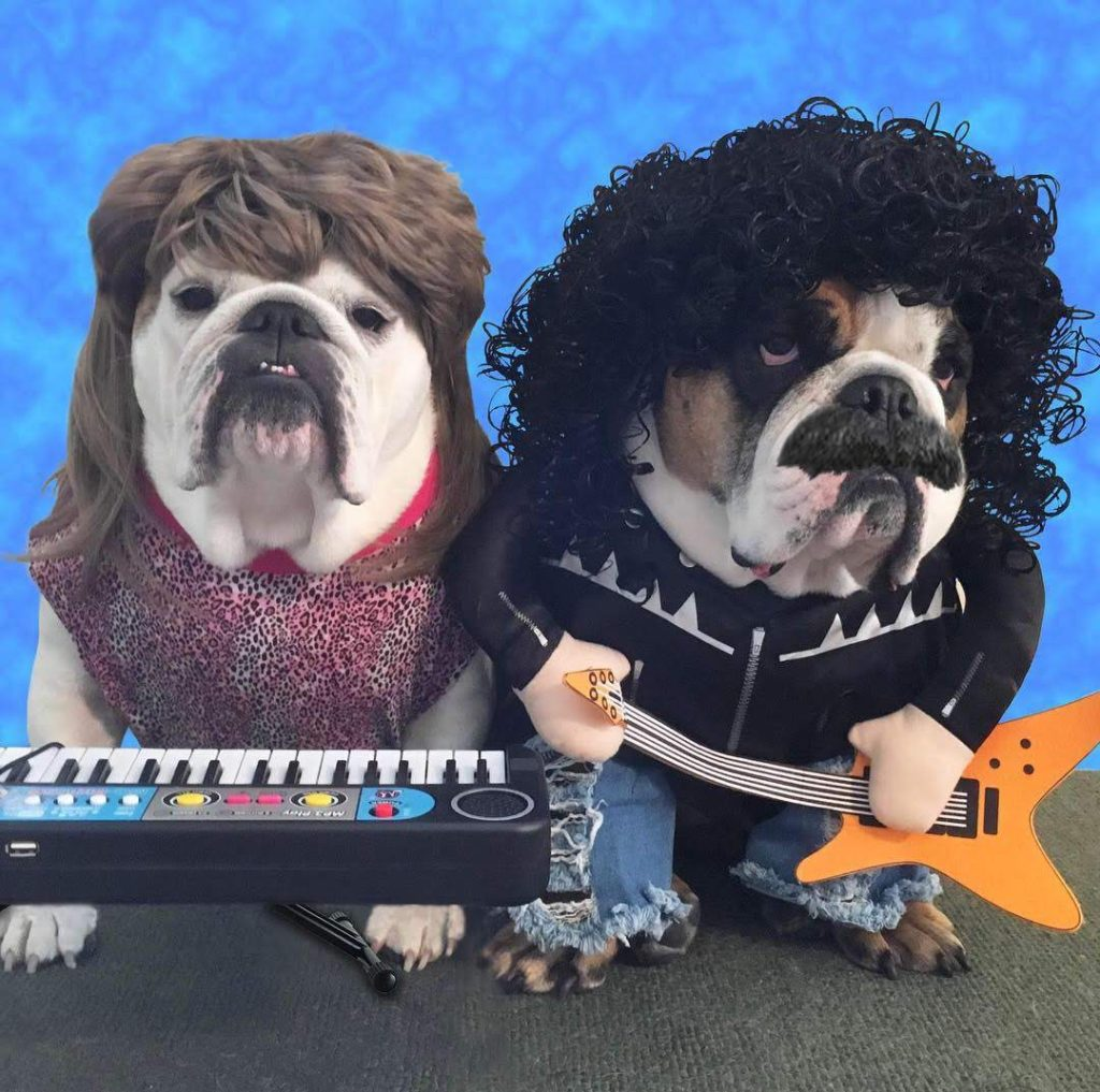 Howl and Oates (Daryl Hall and John Oates)