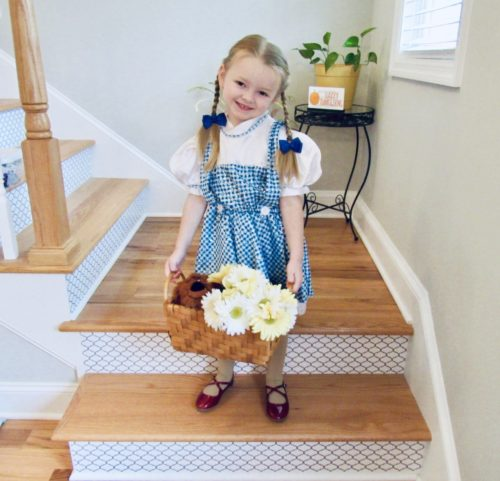 Dorothy from the Wizard of Oz!