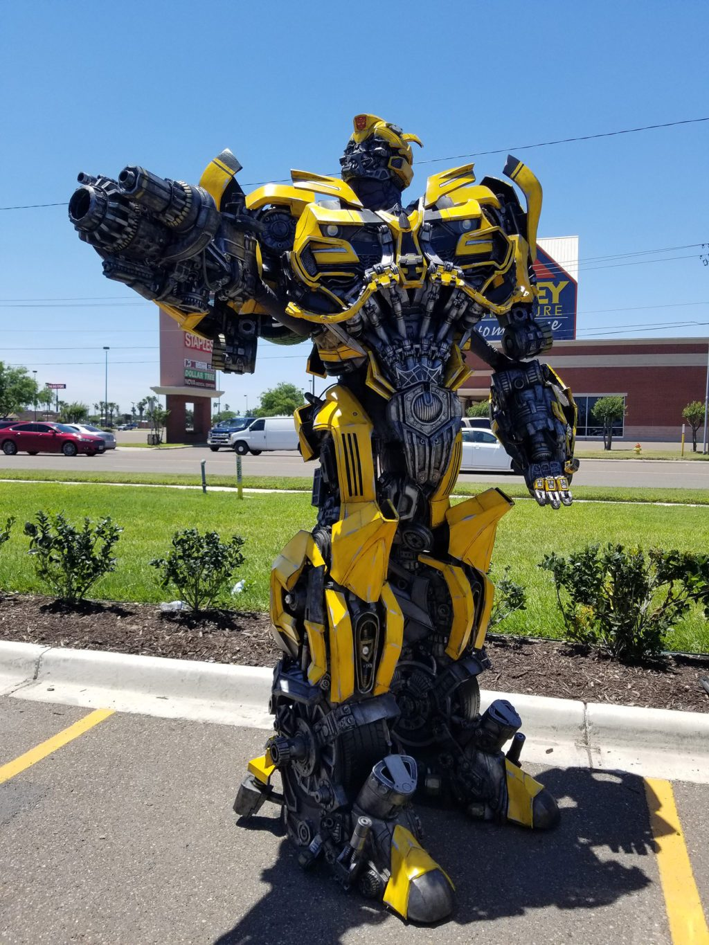 The Amazing Bumblebee