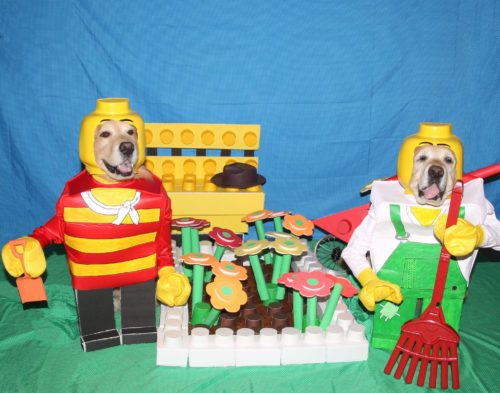 Furry Little Lego Gardeners