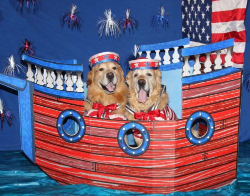 Patriotic Sailing Pups