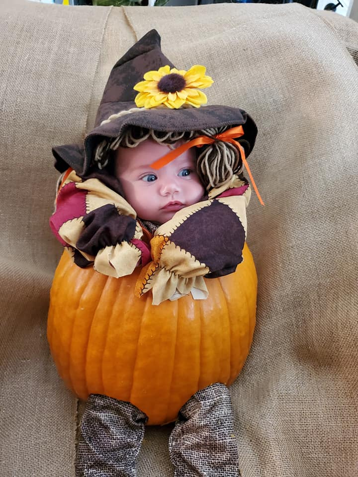 The Great Pumpkin Charlee Sparrow