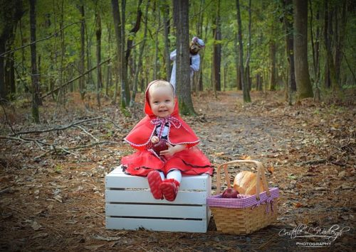 Little Red Riding Hood's Picnic in the Woods