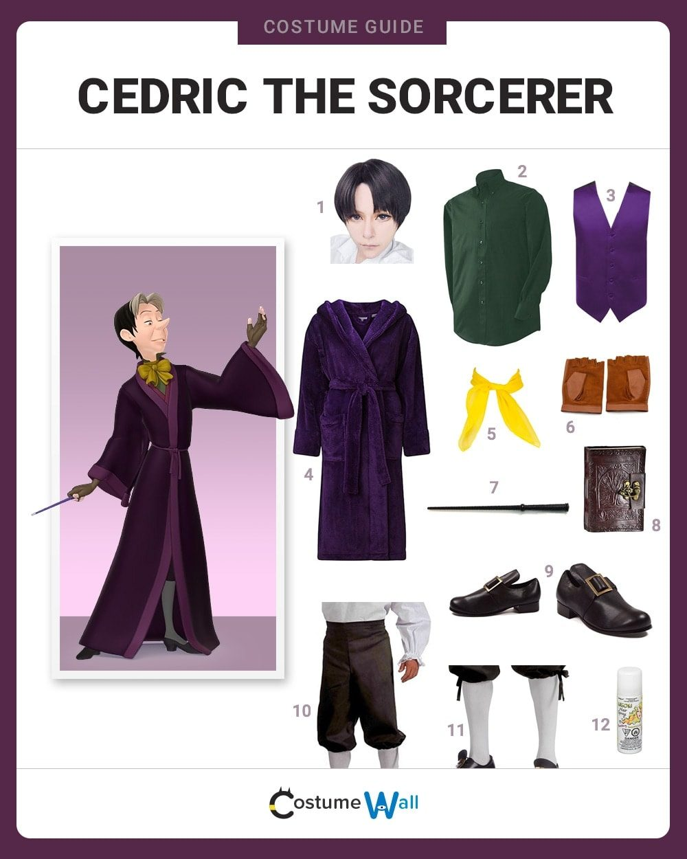 Cedric the Sorcerer Costume