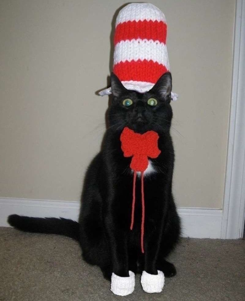cute-cat-costumes-07